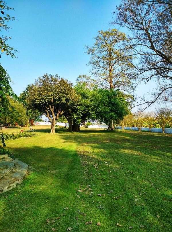 Akanksha Redhu | Travel India | garden phone