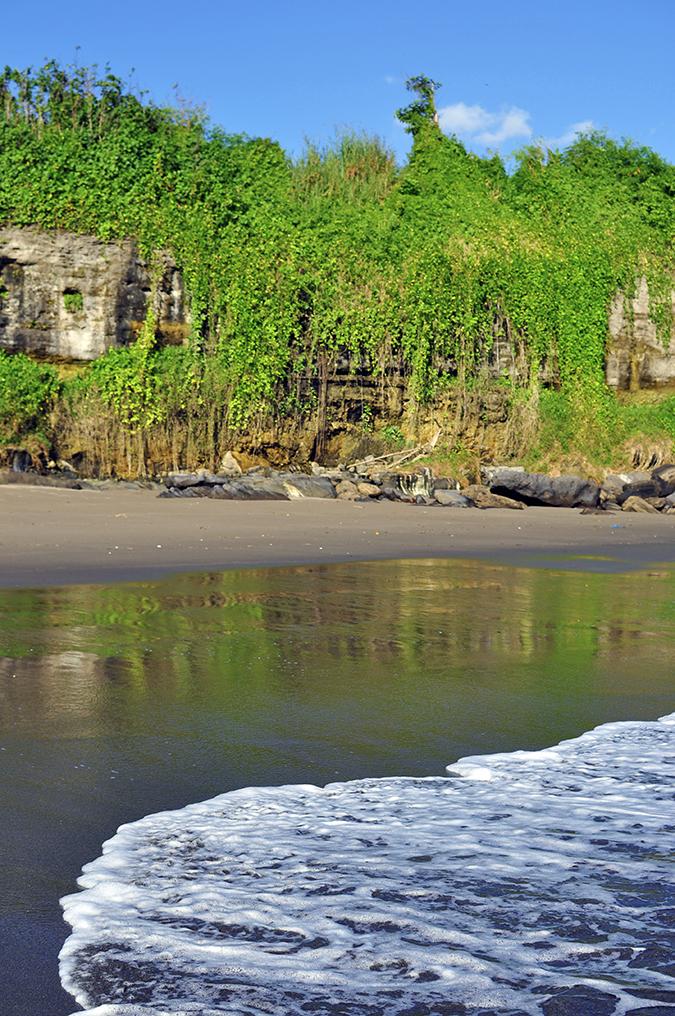 Kedungu Beach | Bali | Akanksha Redhu | in water of rocks and creepers
