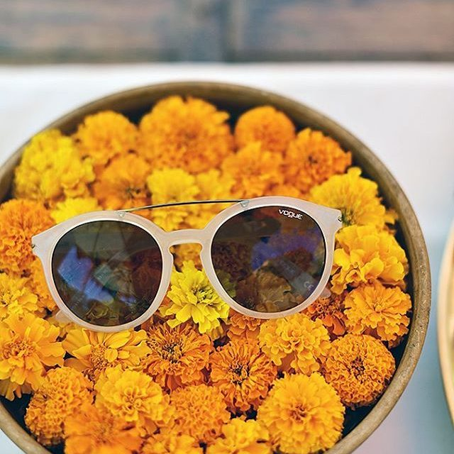 I kept my vogueeyewear sunglasses on a bed of marigoldshellip