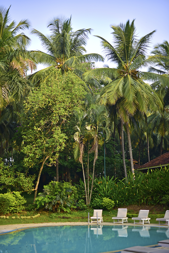 Kairali Ayurvedic Healing Village | Akanksha Redhu | pool long
