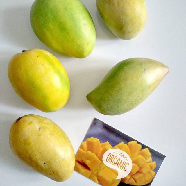 The perfect way to welcome the summers! Fresh organic mangoes!hellip