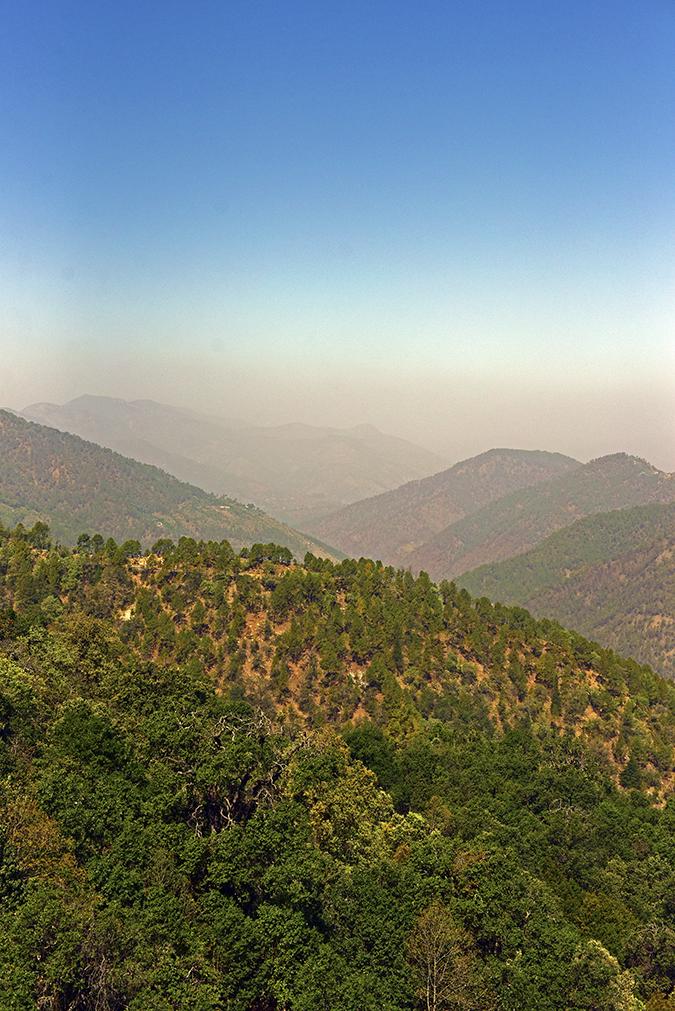 DYO The Organic Village Resort | Akanksha Redhu | mountains haze while leaving