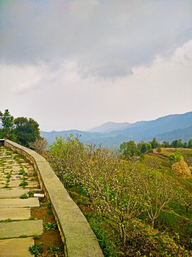 DYO The Organic Village Resort | Akanksha Redhu | mountains from garden