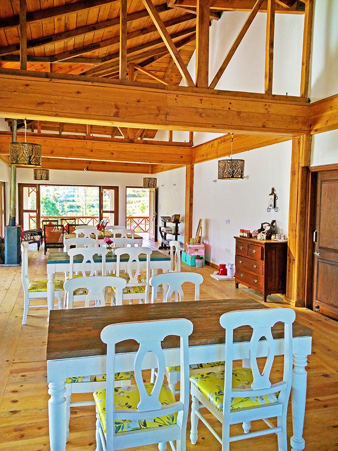 DYO The Organic Village Resort | Akanksha Redhu | full cafe phone